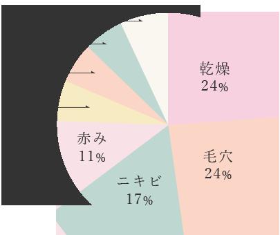 乾燥24%,毛穴24%,ニキビ17%,赤み11%,シミ6%,小ジワ6%,クレーター6%,効果なし6%