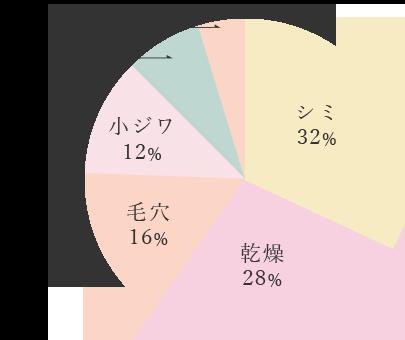 シミ32%,乾燥28%,毛穴16%,小ジワ12%,赤み8%,くすみ4%