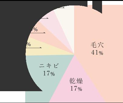 毛穴41%,乾燥17%,ニキビ17%,シミ6.25%,小ジワ6.25%,赤み6.25%,効果なし6.25%